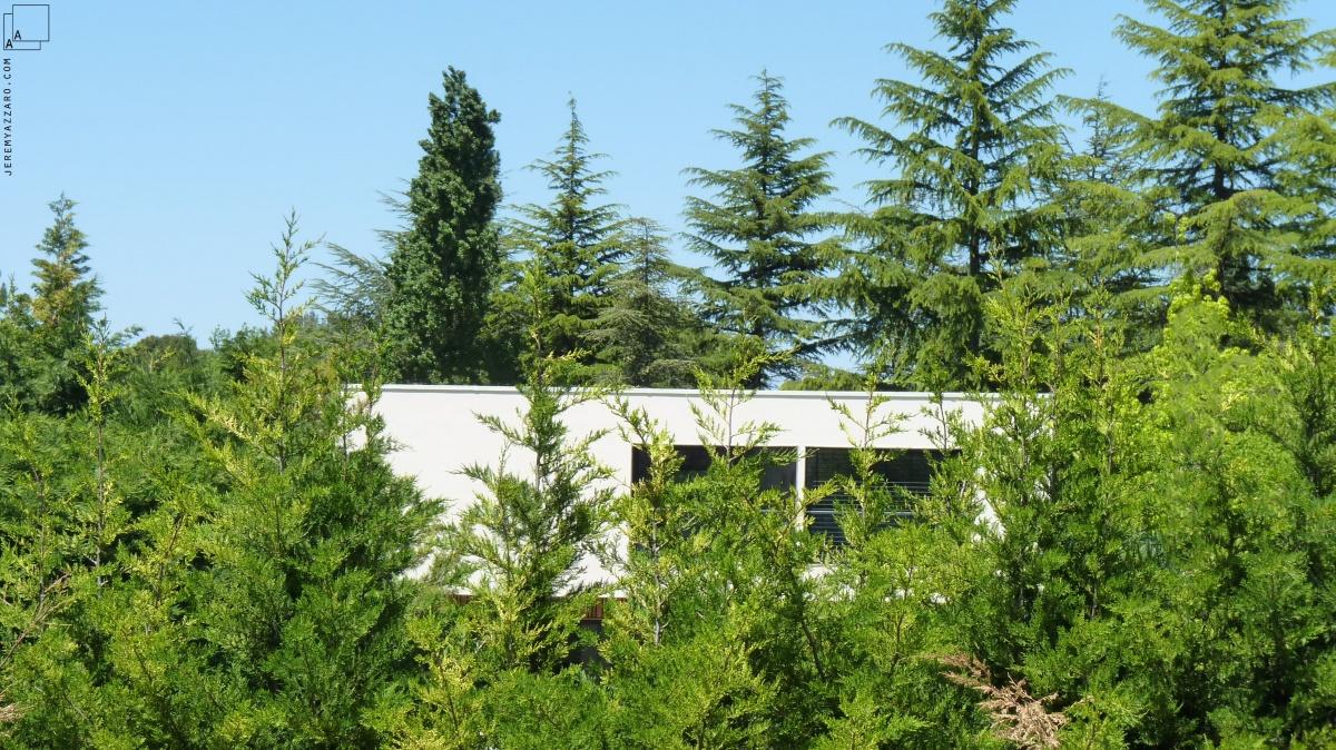 Conception d'une maison contemporaine « à travers champs » : insertion-paysage-maison-contemporaine-provence-azzaro-architecte-min